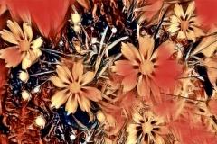 Hollywood-white-daisies